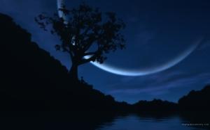 mOon-moon-20004357-1280-800