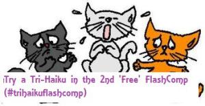 three little kittens flash comp